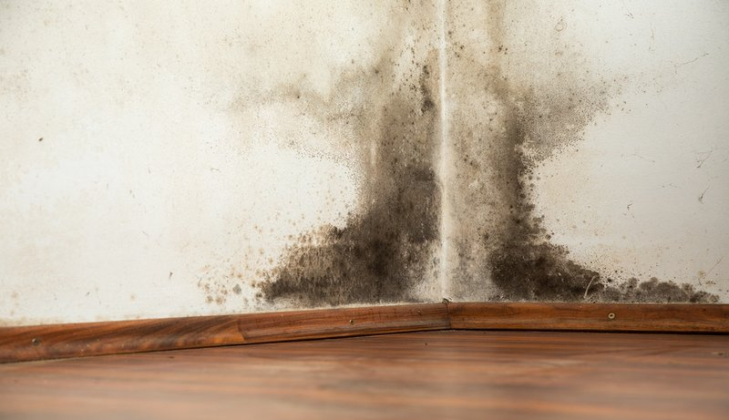 Rembesan Air Pada Dinding